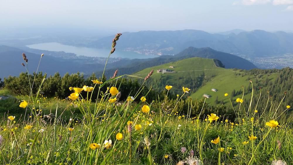 Ziele – Bayerische Alpen: Die beliebtesten 7 Wandertouren der aF-Redaktion für den Frühling